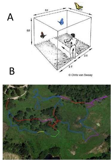 Top panel shows picture of a person walking a pollard transect and bottom panel shows a map of a transect